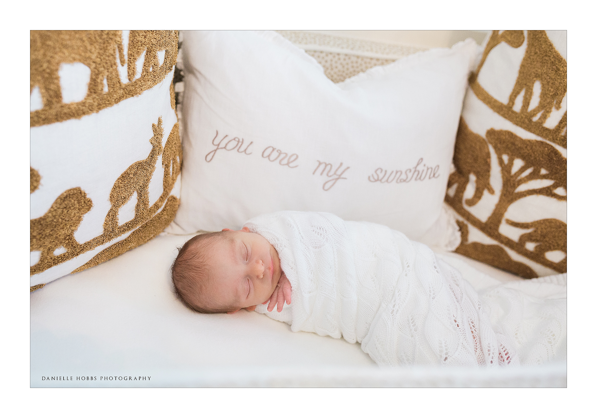 Newborn in crib DC Lifestyle Photography